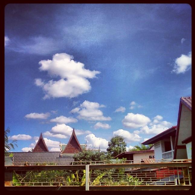 A view...